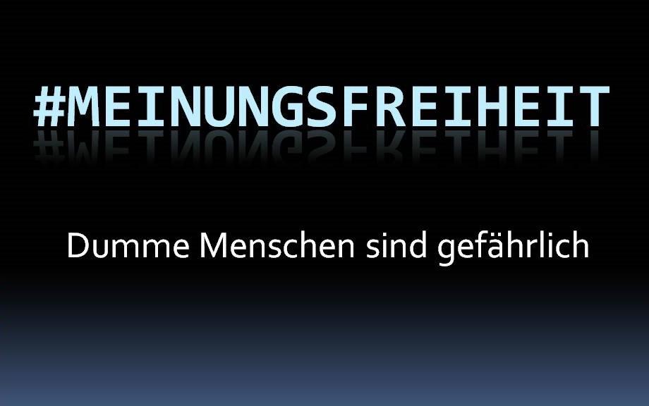 Dumme Menschen sind gefährlich. Meine Meinung zur Kritik an der Asylpolitik der Bundesregierung und Kanzlerin Merkel.